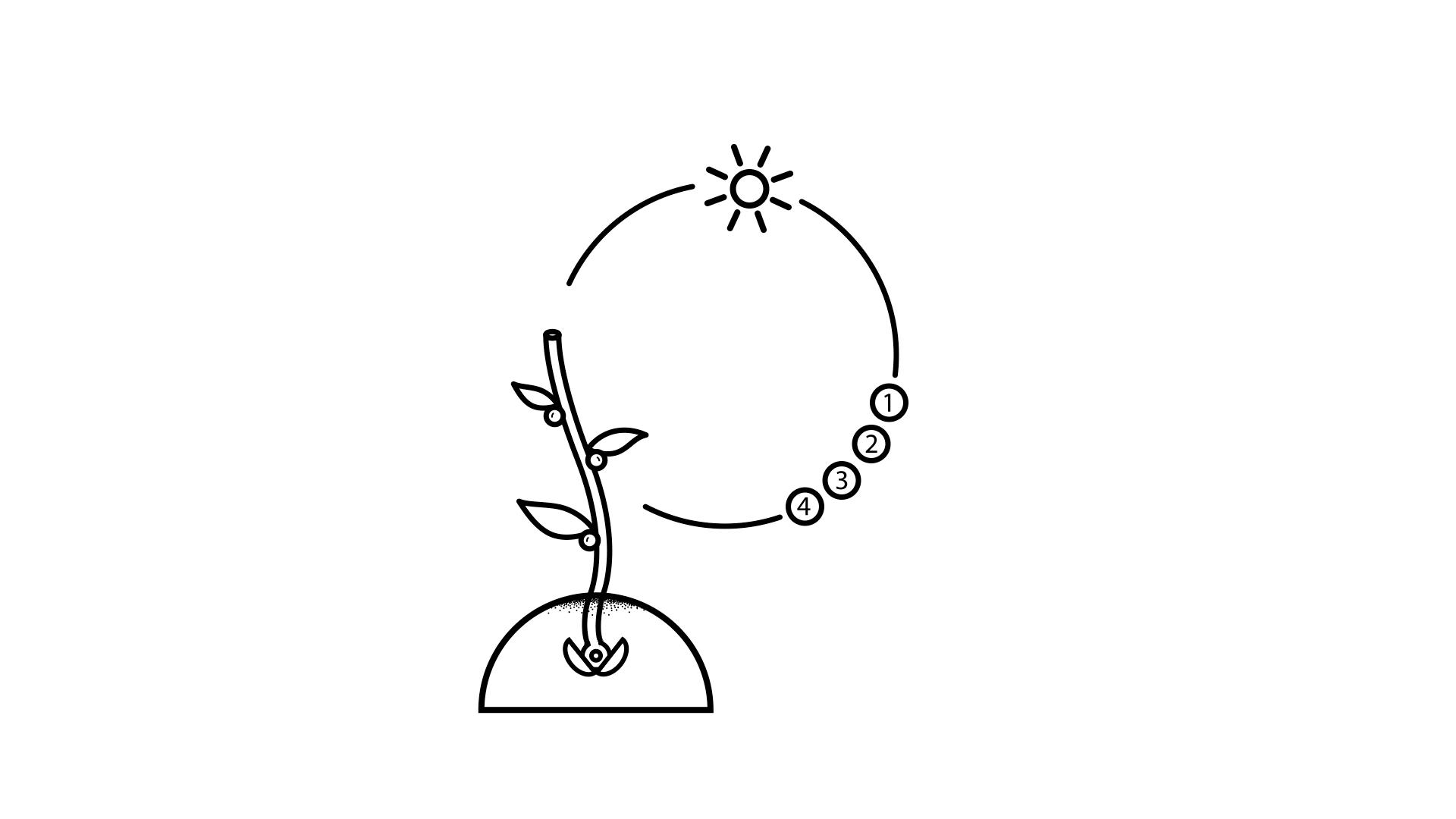 eco-005-1