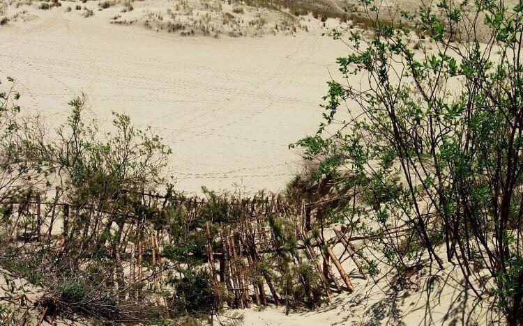 sand-dunes-sanddunes1